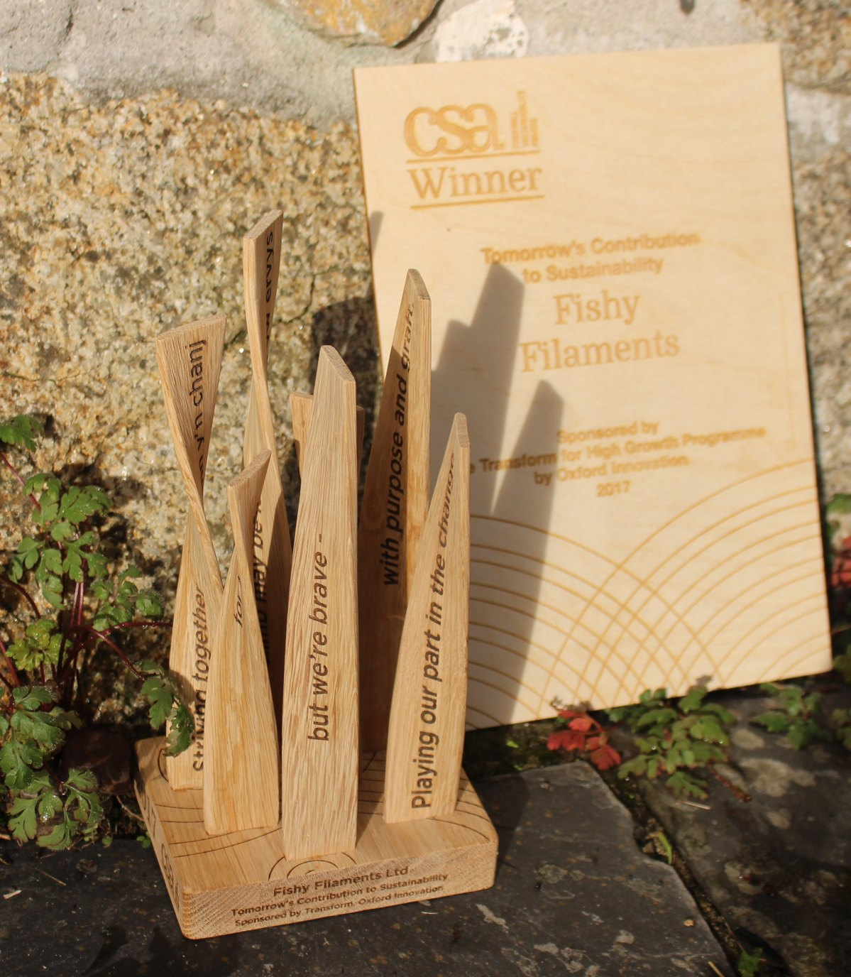 Cornwall Sustainability Awards 2017 – Winners of Best Innovator